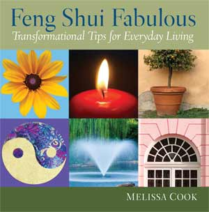 feng shui book by melissa cook